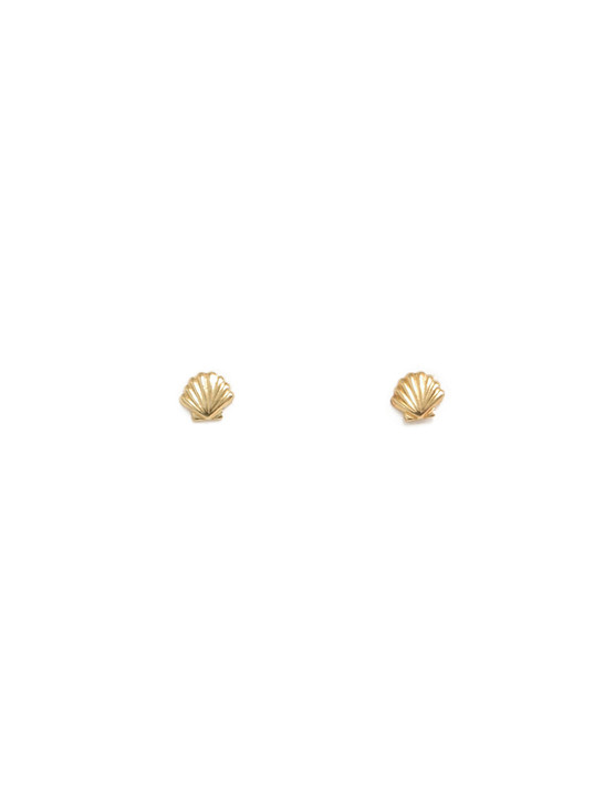 Shell Studs- Gold