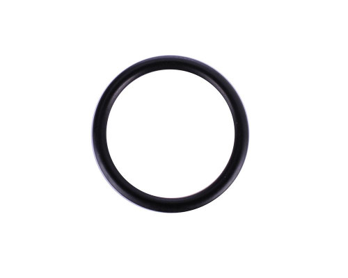 Kingman Spyder Replacement Part #ORG009 - ASA Reg. Head O-Ring