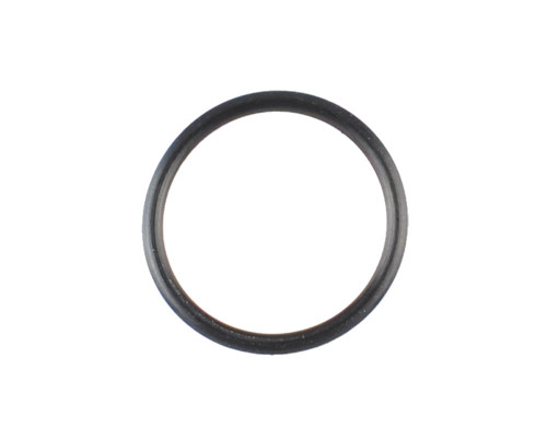 Dye DAM Replacement Part #R60001306 - Bolt Tip O-Ring (Box Rotor)