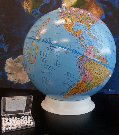 The Pushpin Globe