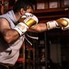 Pinnacle Boxing Glove - Gold/Black