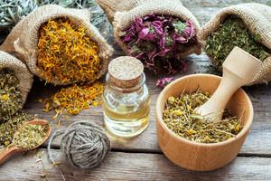 Herbs & Botanicals