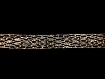Embellished belt 4609