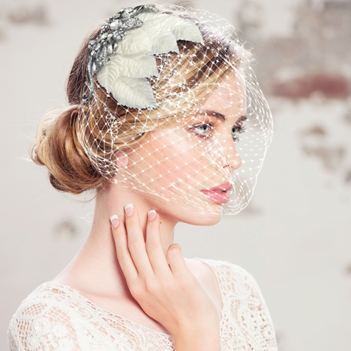 Elite Collection - Regal Luxe Birdcage Veil