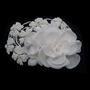 Juliana Headpiece - Ivory