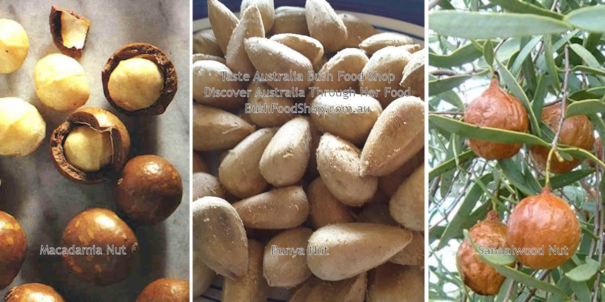 Australian Native Nuts