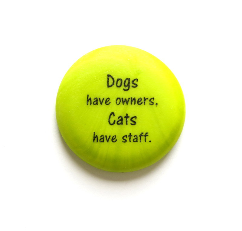 Dogs have owners, Cats have staff. From Lifeforce Glass, Inc.