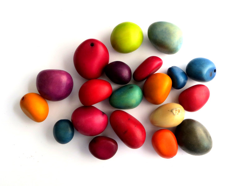 Dyed Taugua Nuts, Small, 21-35 mm, Bag of 20