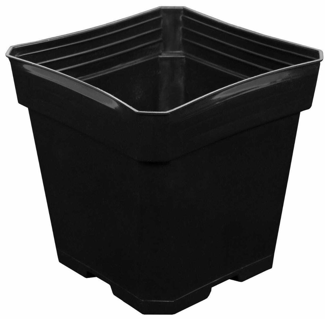 Gro Pro Black Plastic Pot 5.5 in x 5.5 in x 5.75 in (Must buy 200) - 1