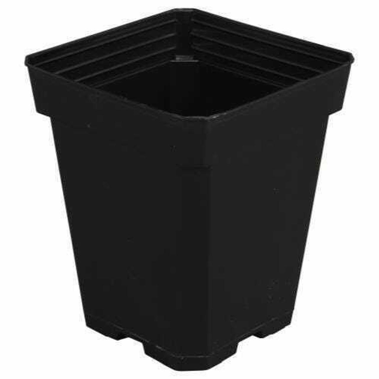 Gro Pro Black Plastic Pot 5 in x 5 in x 6.5 in (Must buy 200) - 1