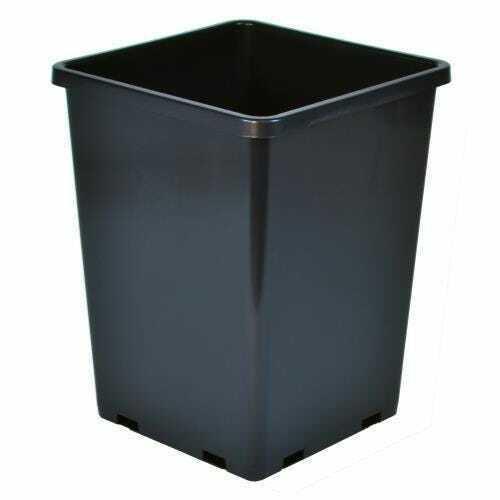 Gro Pro Rose Bucket Black 7.6 in x 7.6 in x 9.7 in (Must buy 10) - 1