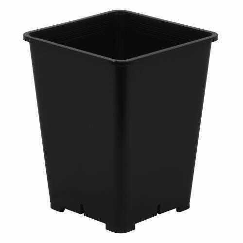 Gro Pro Premium Black Square Pot 6 in x 6 in x 8 in - 1