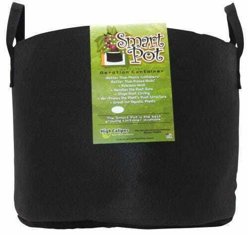Smart Pot Black 15 Gallon w/ handles - 1