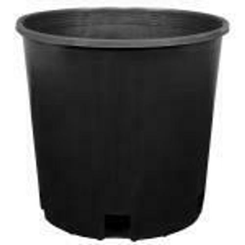 Gro Pro Premium Tall Nursery Pot 3 Gallon - 1