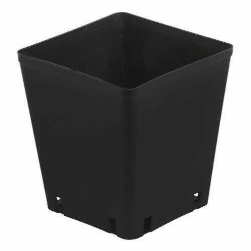 Gro Pro Black Plastic Square Pot 5 x 5 x 5.25 in - 1