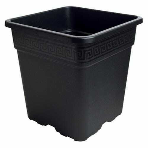 Gro Pro Black Square Pot 1/2 Gallon - 1