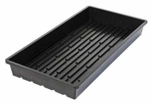 Super Sprouter Quad Thick 10 x 20 Tray - No Hole - 1