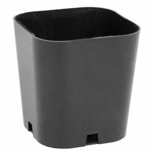 Super Sprouter Singled Out Propagation Pot 2 in (50/Bag) Must buy 50 - 1
