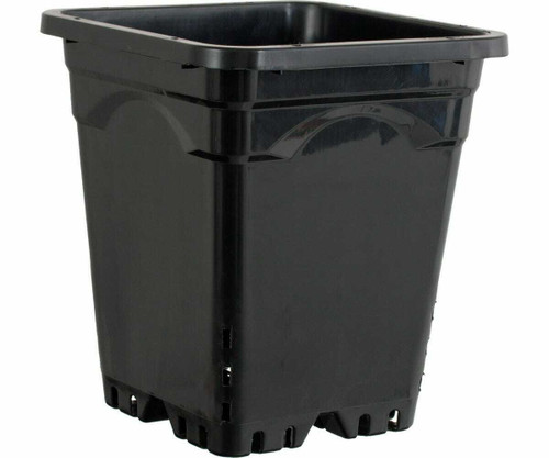 "12""x12"" Square Black Pot 12"" Tall - 1"
