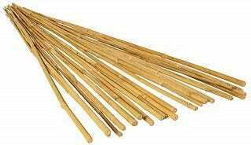 GROW!T 4' Bamboo Stakes, pack of 25 - 1