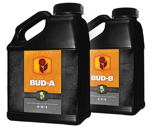Heavy 16 Bud Part A 6 Gallon - 1