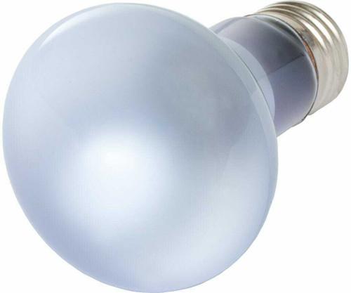 Agrosun Dayspot Incandescent Bulb, 60W - 1