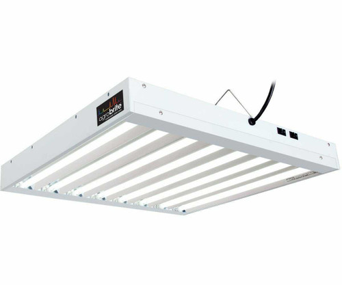 T5 2Ft 8 Tube Fixture w/Bulbs - 1