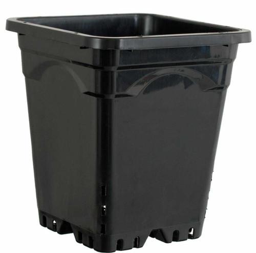 "9""x9"" Square Black Pot 10"" Tall, 24 per case - 1"