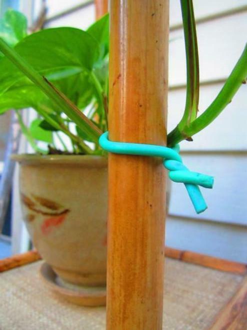 Garden Soft Tie - 1