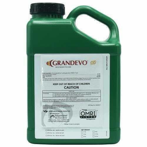 Marrone Bio Innovations Grandevo CG 4 lb - 1