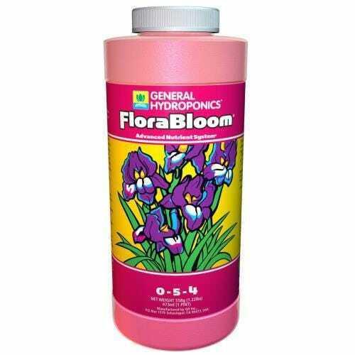 GH Flora Bloom Pint - 1
