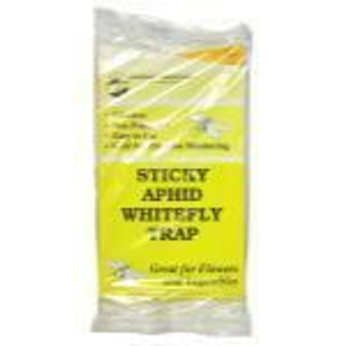 Sticky Aphid Whitefly Trap 5/Pack - 1