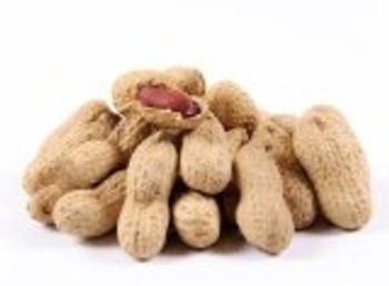 Bulk Nuts - Jumbo Peanuts - Roasted and Salted - 30 lb.
