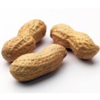 Bulk Nuts - Jumbo Peanuts - Dry Roasted - No Salt - 30 lb.