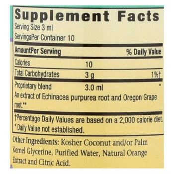 Herbs For Kids Echinacea/Golden Root Orange - 1 oz