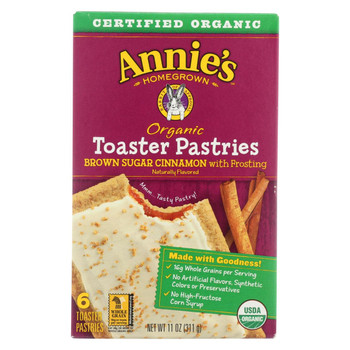 Annie's Homegrown - Organic Toaster Pastries - Brown Sugar Cinnamon - Case of 12 - 11 oz.