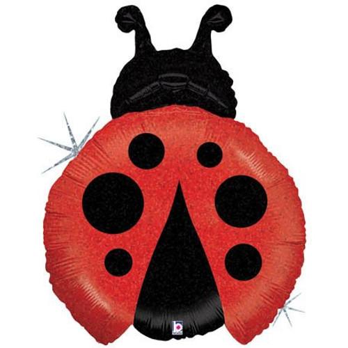 """27"""" Little Ladybug Shape"""
