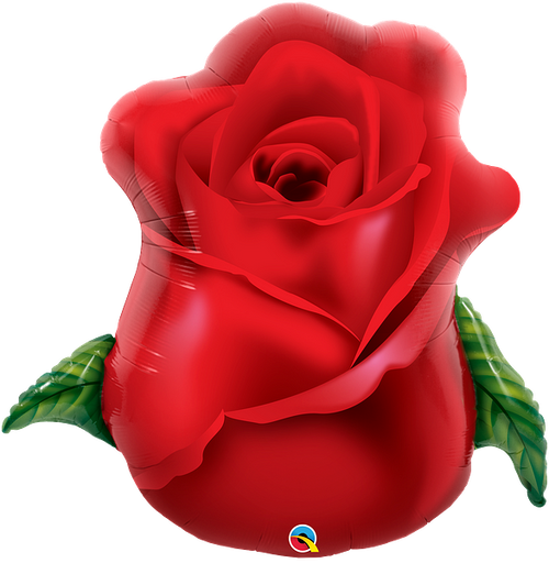 "33"" Red Rose Bud"