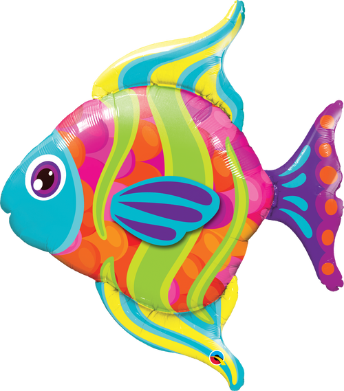 "43"" Fashionable Fish"