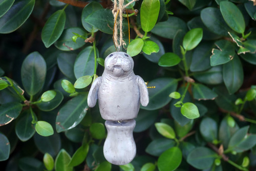 Manatee BA Ornament