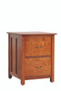 Coventry 2 drawer file cabinet