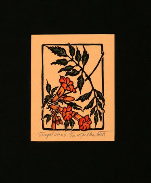 Trumpet Vine II