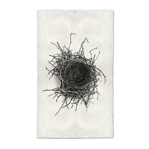 Bird Nest Study Print #2