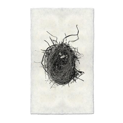 Bird Nest Study Print #4