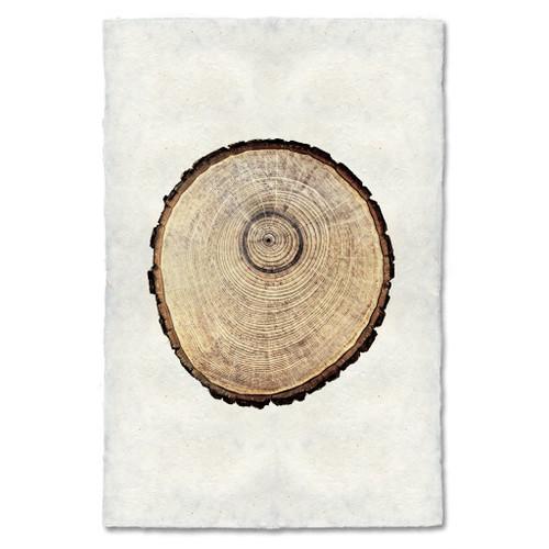 Oak 2 Print