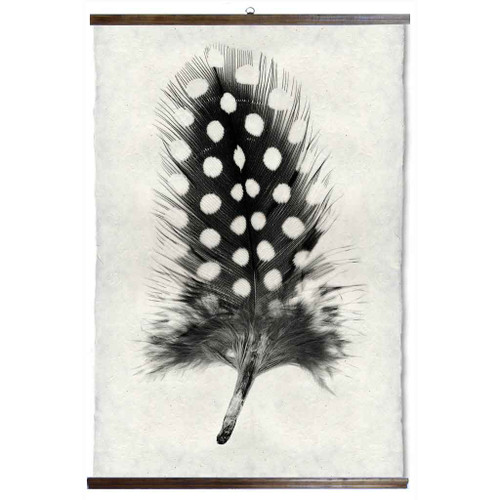 Grand Format Feather Study Print #1 with wood Hanger