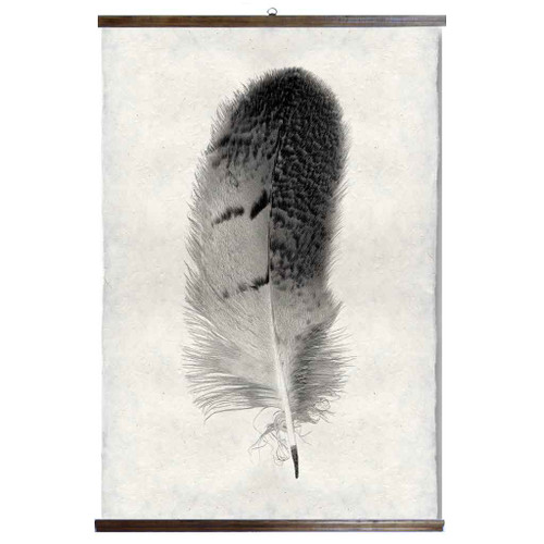 Grand Format Feather Study Print #7 with wood Hanger