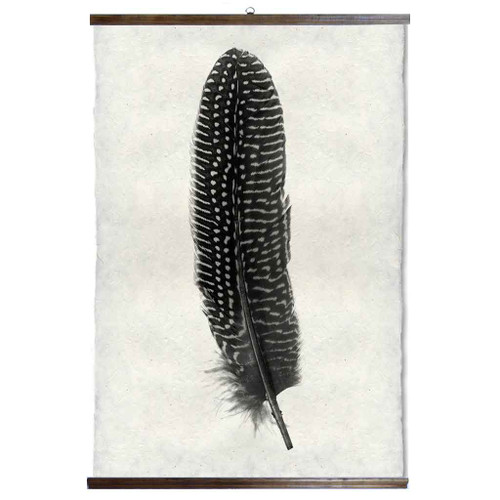 Grand Format Feather Study Print #5 with wood Hanger