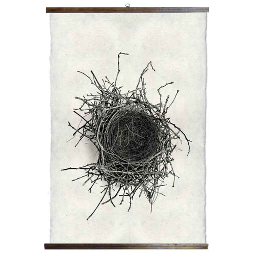 Grand Format Nest Study #2 Print with wood Hanger