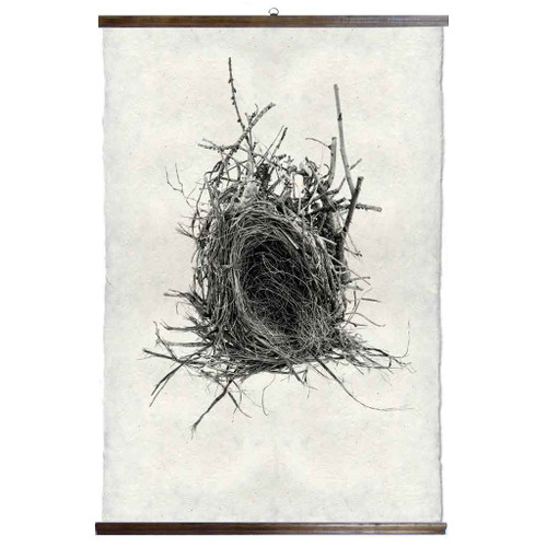 Grand Format Nest Study #12 Print with wood Hanger